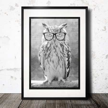 Bilde av Konstgaraget Owl poster