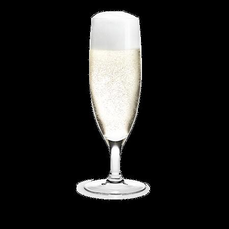 Holmegaard Royal samppanjalasi 1 kpl 25 cl