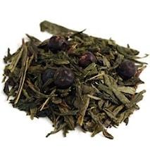 Grönt Te Sencha Skogsbär 300 gram