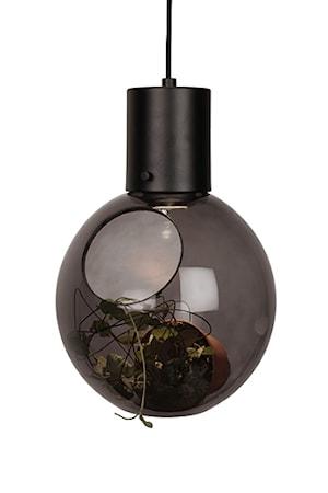 Bilde av Globen Lighting Pendel Mini Hole Røyk / Mattsvart