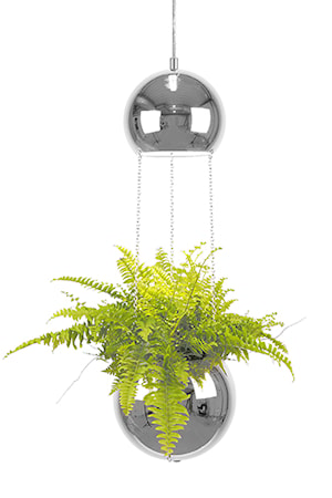 Bilde av Globen Lighting Pendel Mini Planter Krom