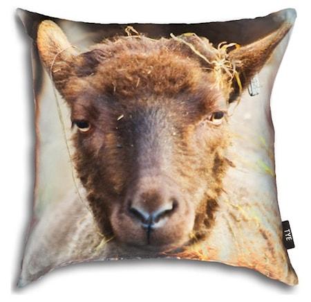 Bilde av TYE living Sheep putetrekk 50x50 cm