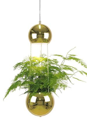Bilde av Globen Lighting Pendel Mini Planter Messing