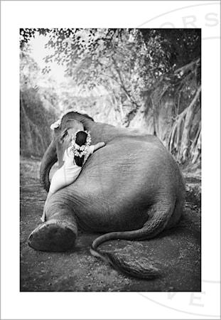 Love Warriors Adele & Ketut fotoprint – 30×40