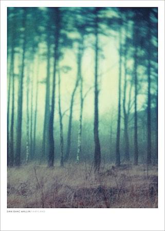 Dan Isaac Wallin Fairyland poster – 50x70