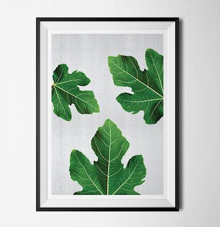 Bilde av Konstgaraget Plant 3 poster