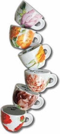 Ancàp Rose espressokupit ja alusta 6-pack
