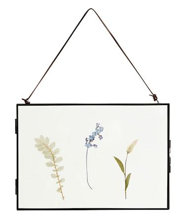 Meta Ram med Torkade blommor Svart Horizontal