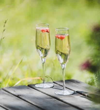 champagneglas bär kitchentime