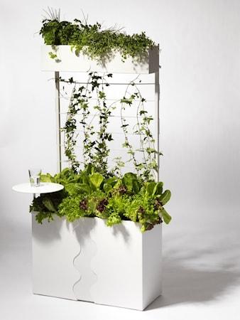 Urban garden paket