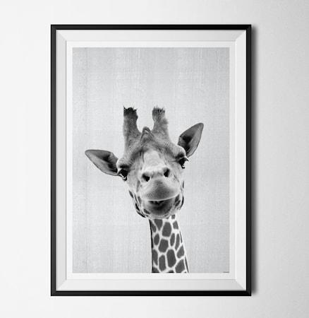 Bilde av Konstgaraget Grey animals jiraffe poster