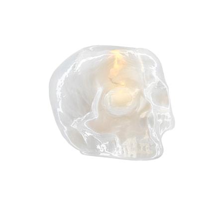 Bilde av Kosta Boda Still Life Skull Hvit Lyslykt