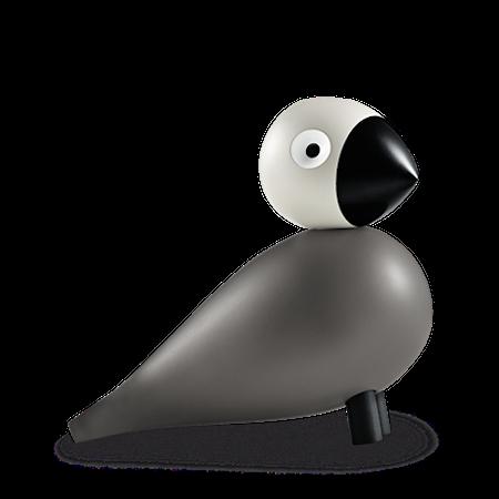 Sångfågel Ernst grå/ljusgrå
