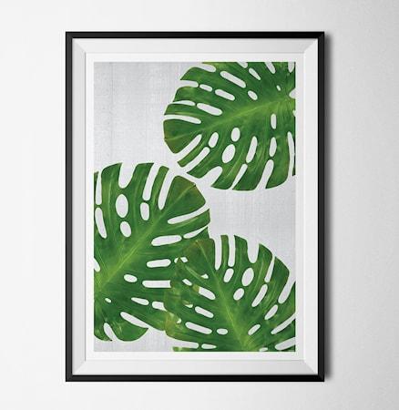 Bilde av Konstgaraget Plant 1 poster