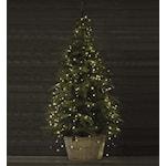 824496 Markslöjd smart ljusskedja till julgran 5 slingor LED 280 ljus