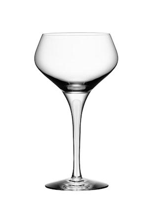 Intermezzo Satin Champagne Coupe 23 cl