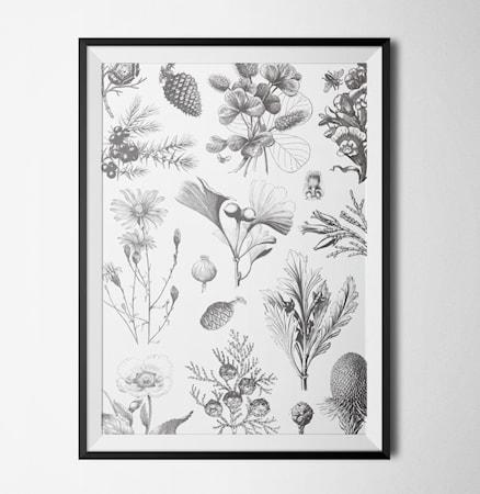 Bild av Konstgaraget Illustrated garden poster