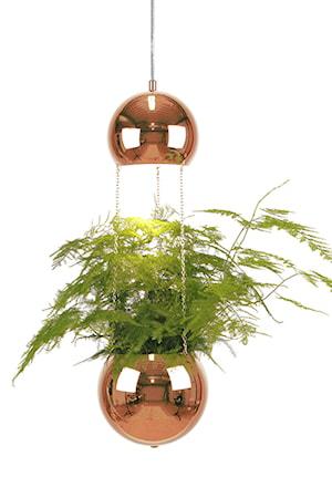 Bild av Globen Lighting Pendel Mini Planter Koppar