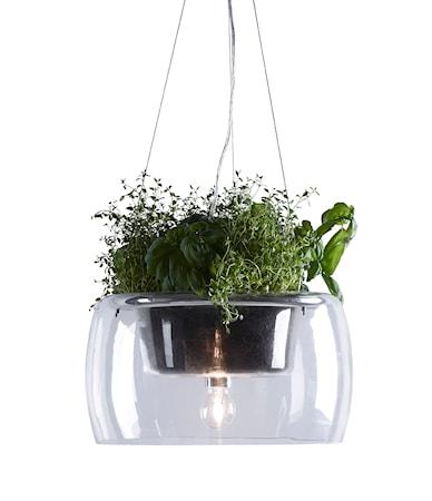Bild av Markslöjd Plant Taklampa Klar