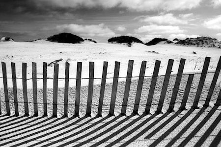 Beach Black White Väggdekoration