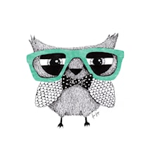 Hipster owl A3