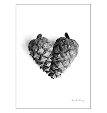 Pinecone of love poster