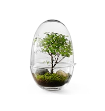 Grow Green House