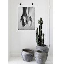 Fidelity, large fotoprint - 100x70