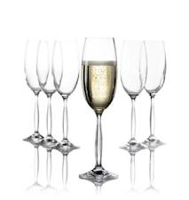 Champagneglas OPERA 6-pak