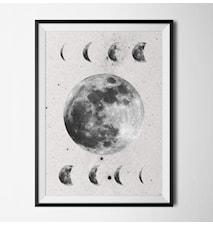Moon phase vit