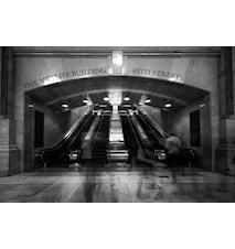 Stairways To The Top Väggdekoration