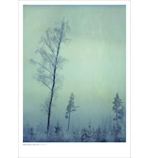 Torsö III poster