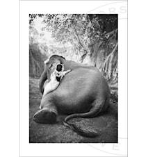 Adele & Ketut fotoprint - 30x40
