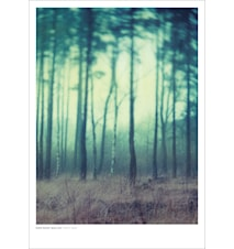Fairyland poster – 50x70