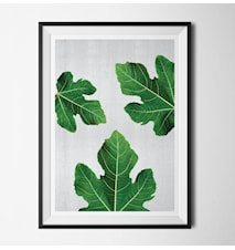 Plant 3 poster