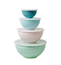 Melamine Bowls Set of 4 with Plastic Lid 'In Color We Trust' Mix