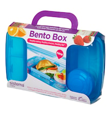 Lunch 2016 Bento Box