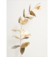 Harmony in gold poster - 50x70