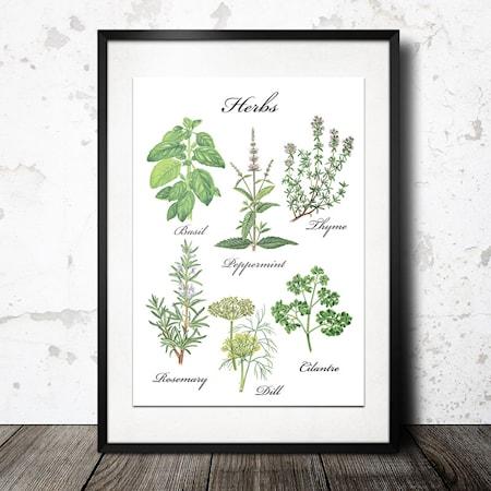 Bild av Konstgaraget Herb vit poster