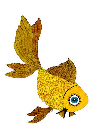Bild av A Grape Design Goldfish poster