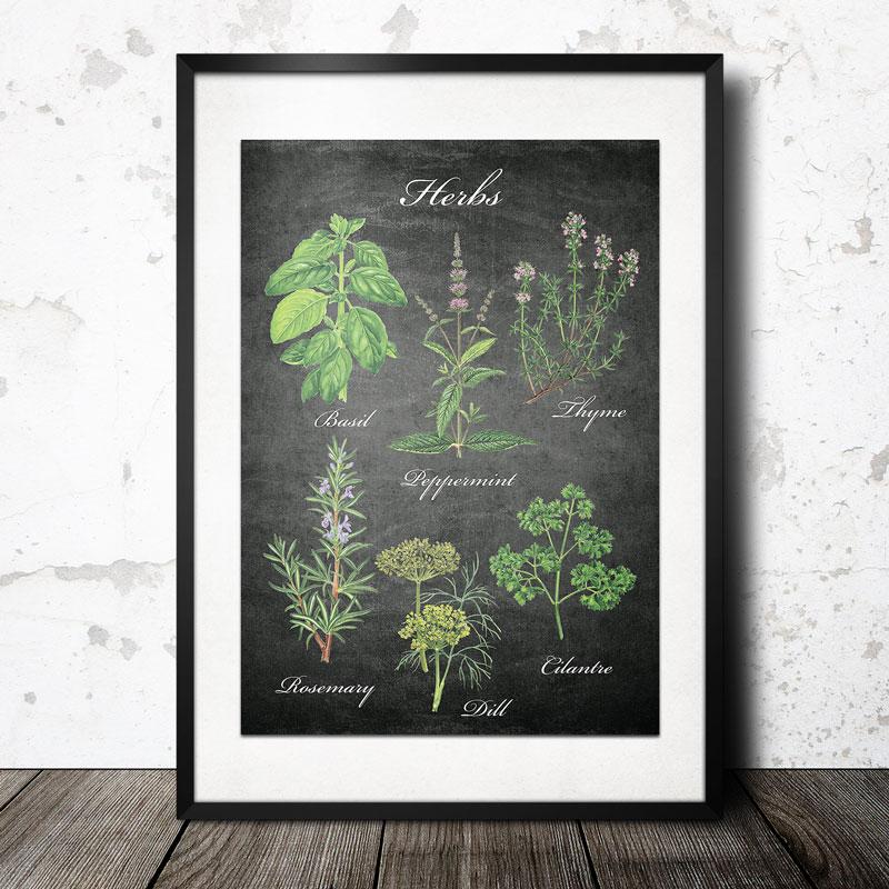 Herb svart poster - 40x60