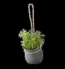 GROW-IT yrttiruukku - harmaa
