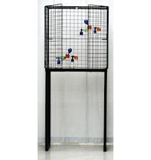 Les Volieres cabinet B40