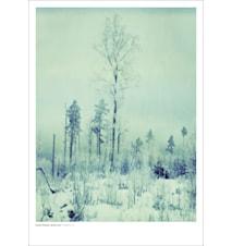 Torsö IV poster