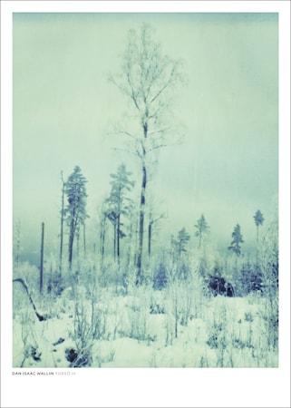 Bild av Dan Isaac Wallin Torsö IV poster