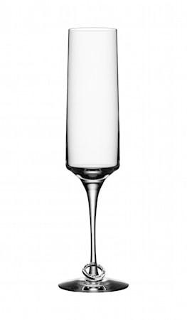 Amor Vincit Omnia Champagneglass 18 cl 2 pk