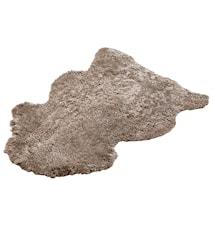 Aussie Korthårig fårskinnsfäll ca. 60x100 cm - Cork