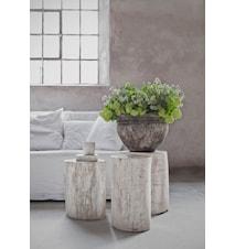 Petrified wood tables småbord