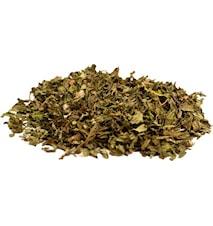 Ört Te Marokansk Mynta 150 gram