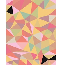 Color of geometry poster